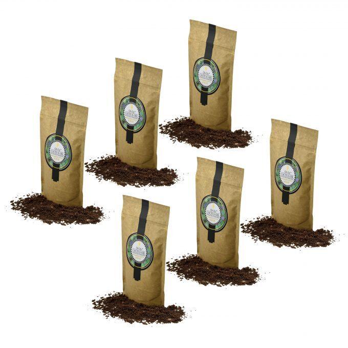 Oli-Oly Exfoliating Coffee Scrub with Cactus Oil, 80g